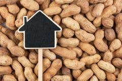 House pointer, the price tag lies on  peanut Royalty Free Stock Photos