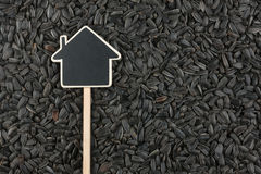 House pointer, the price tag lies on sunflower  seed Stock Photos