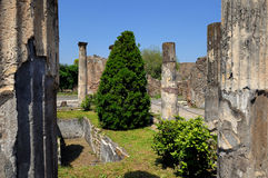 House in Pompei. Internal square of house in Pompeii with garden Royalty Free Stock Image