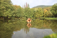 House on a pond. House for swans in the pond on the background of trees Royalty Free Stock Image
