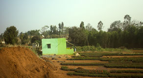 House of poor Indian and vegetable garden Stock Image