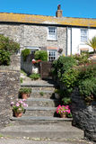 House in port isaac Royalty Free Stock Image