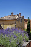House in Provence,France. A nice view of an house in Provence,France Royalty Free Stock Image