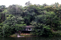 House rain forest amazon river Stock Photos