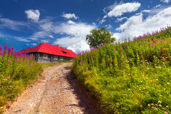 House with red roof Stock Photography