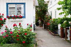 House with red roses Royalty Free Stock Photography