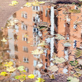House is reflected in puddle with leaf litter Royalty Free Stock Image