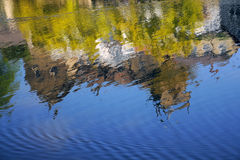 House reflection in river stream, Knaresborough UK. House reflection on the surface of river Nidd, taken in bright summer sunlight in the Mother Shipton park Royalty Free Stock Images