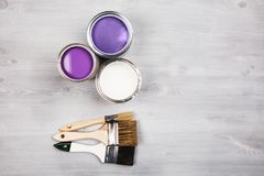 Paint cans and colored brushes on white background stock image