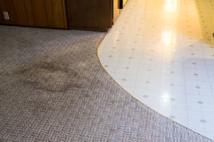 House Renovation and Remodel. Stained carpet shows signs of being very dirty at a house remodel and renovation Stock Photography
