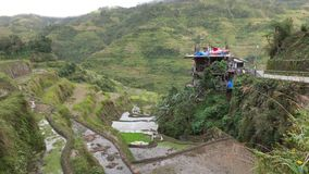 A house with rice field in Banaue, Philippines stock video