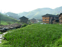 House in the rice fields Stock Photos