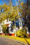 House. He road to the house dotted with yellow leaves. Birch and blue sky Stock Photos