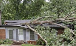House Roof Caved in By Large Tree During Storm Royalty Free Stock Image