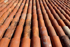 House roof covered with red tiles Stock Photography