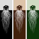 House With Roots Royalty Free Stock Photo