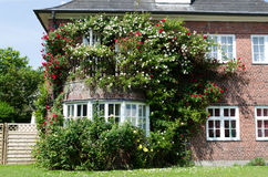 House with roses Royalty Free Stock Photo