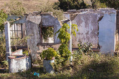 House Ruins Royalty Free Stock Photo