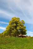 House in rural area Stock Image