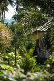 House in a Rural Area of Koh Samui, Thailand. Stock Photography