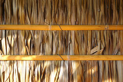 House`s wall made from dried leaves of the nipa palm and bamboo. old wall textured Stock Image