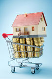 House for sale. Home up for sale in a shopping trolley Royalty Free Stock Photos