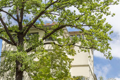 House seen through the branches of a tree Stock Photo