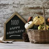Chalkboard with text happy halloween and pumpkins Stock Image