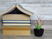 House shaped pile of old books, green plant in a black flowerpot on bleached oak shelf. Family, education, knowledge, reading habits, safety, environment stock photography