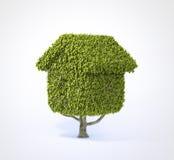 House shaped tree. On white background Stock Photography