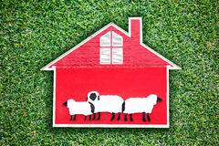 House of sheep Royalty Free Stock Photos