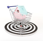 House in shopping basket Stock Photography