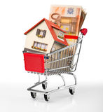 House in shopping-cart with euro bills Royalty Free Stock Photo