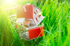 House in shopping cart. Shallow depth of field Royalty Free Stock Photography