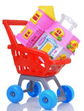 House in sopping cart concept Stock Photo