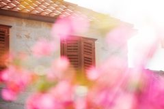 House and spring pink cherry flowers Stock Photo
