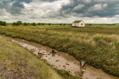 Marshland near the River Crouch, England, UK. House on stilts and some pylons in the mud of the marshland near the River Crouch, Wallasea Island, Essex, England Stock Photo