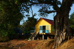 House on stilts under ancient tree Stock Photo
