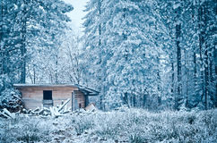 House for storing firewood in winter. Snow around Stock Photography