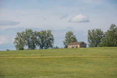 House in a summer field. Stock Image