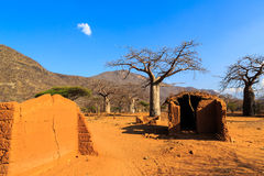 House surrounded by baobab trees in Africa Royalty Free Stock Photo