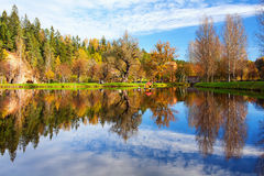 House for swans on the lake in the autumn forest Stock Images