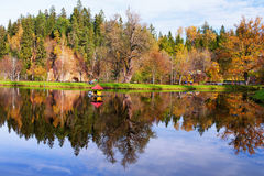 House for swans on the lake in the autumn forest Stock Image