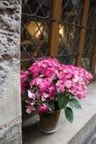 House. A symbol of Paris, Rue de Montmorency, petunia Stock Photos