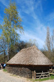 House with thatch roof. And birch Royalty Free Stock Image