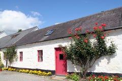 house thatched ireland Royaltyfria Foton