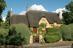House with thatched roof. And green hedges, England Stock Photos