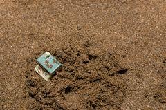House. Toy house on the sea, beach, sand, concept, home, estate, family, summer, construction, nature, real, property, miniature, architecture, vacation royalty free stock photo