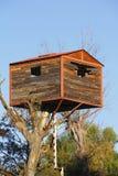 House on the tree I Royalty Free Stock Photo