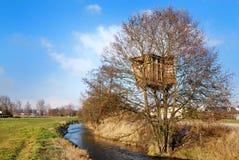 house tree Στοκ Εικόνα